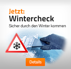 box1 wintercheck 240p